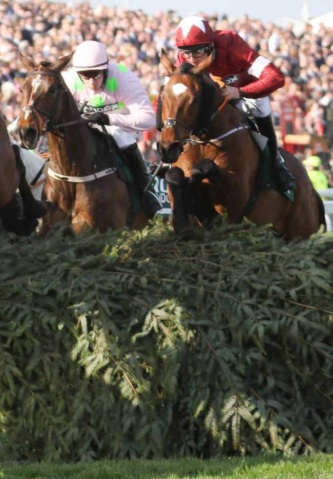 Tiger Roll will not be defending his Grand National crown at Aintree next month