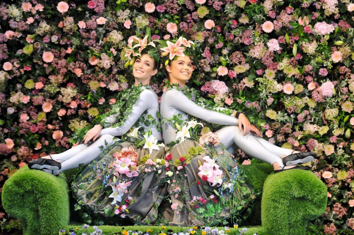 2018 harrogate spring flower show opens the northern echo spectacular harrogate spring flower show opens for 2018 mightylinksfo