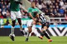 WANTED: Newcastle United's Dwight Gayle is on loan at West Brom