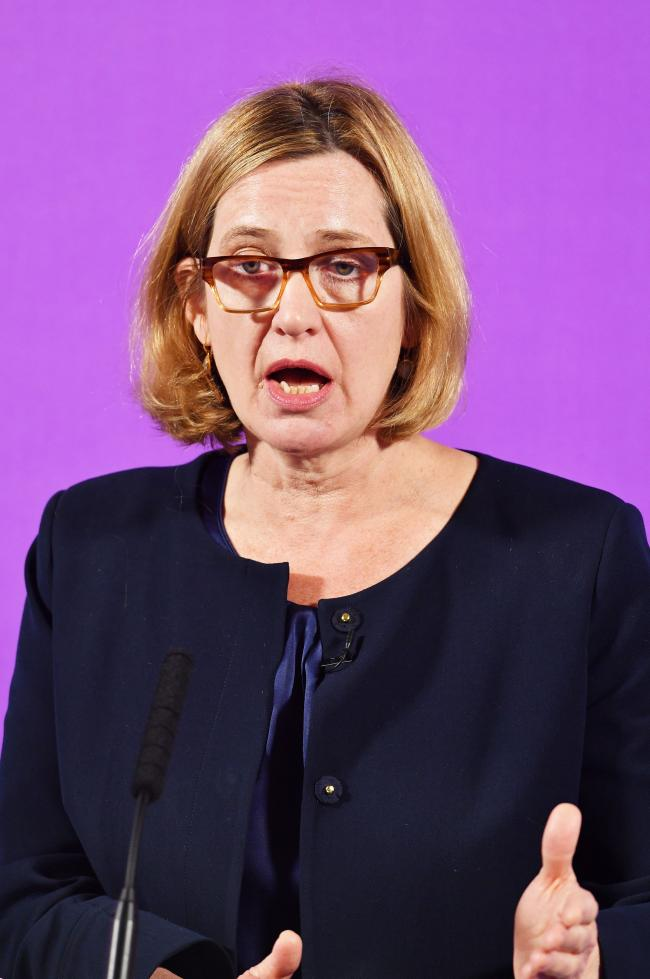 SHE HAD TO GO: Former Home Secretary Amber Rudd Picture: PA