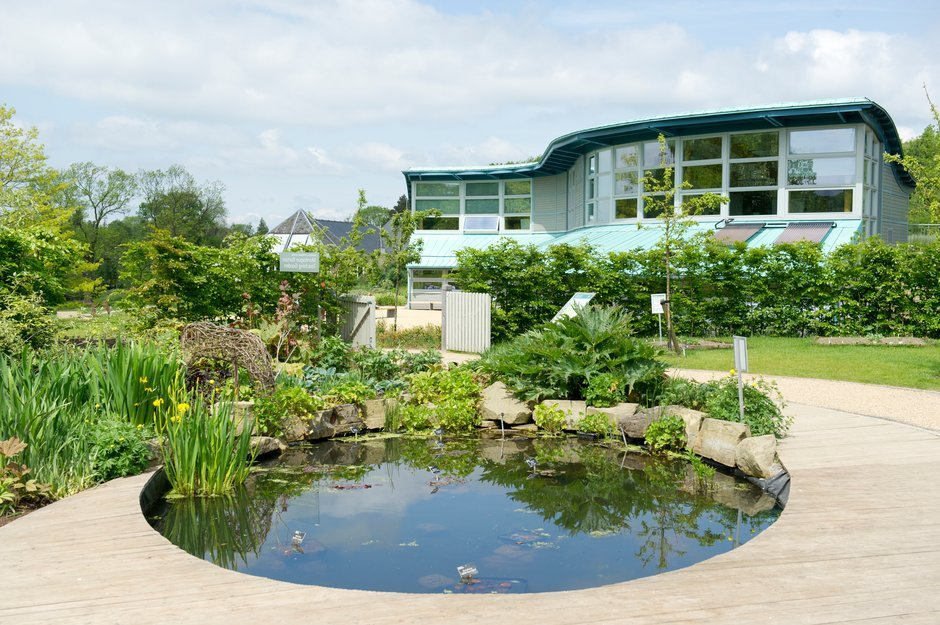 The Wildlife Pond in front of the Learning Centre at RHS Garden Harlow Carr