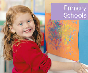 The Northern Echo: Primary Schools