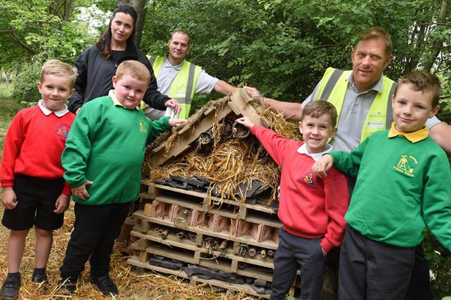 BUG WORK: Children have helped to establish a nature reserve Picture: DOUG MOODY