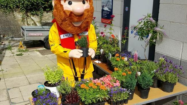 DAY OUT: RNLI mascot Stormy Stan will be helping out during this year's Harbour DayPicture: RNLI/PAUL NICHOLSON
