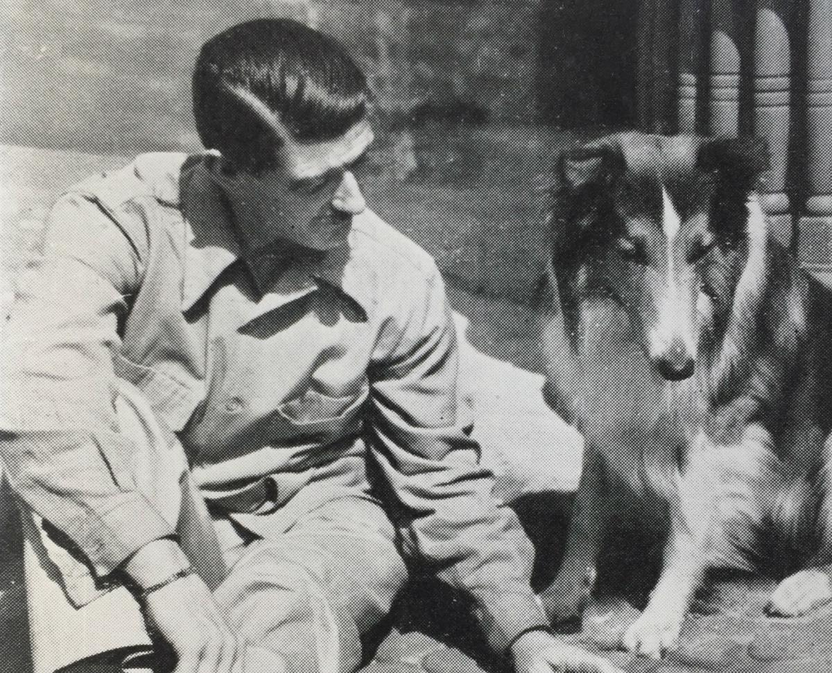 hear about the remarkable life of lassie come home author the