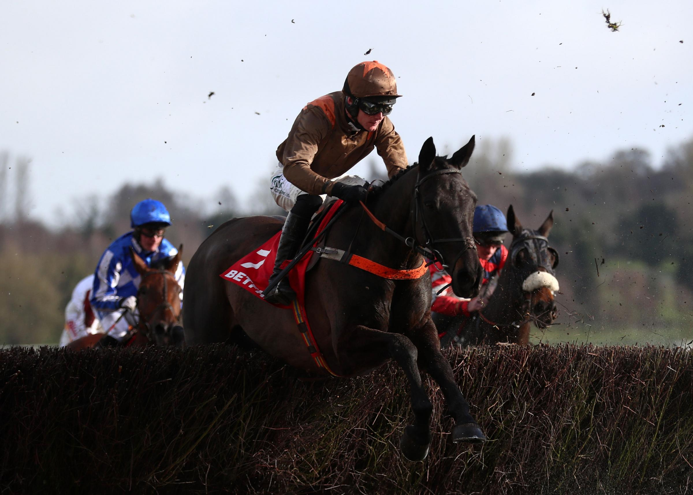 Regal Flow ridden by Sean Houlihan before winning the Betfred Midlands Grand National during Betfred Midlands Grand National Day at Uttoxeter Racecourse. Picture: PA
