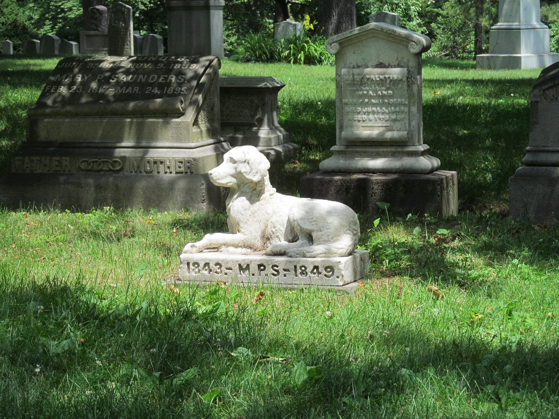 PET CEMETERY: The first animal grave archive is being created
