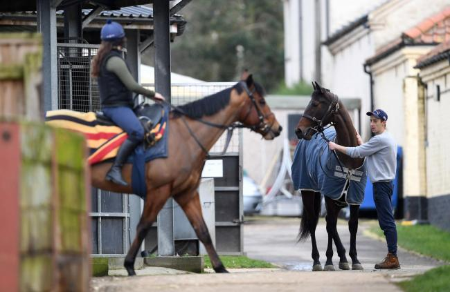Stable staff at Kremlin House Stables, Newmarket. Picture: PA