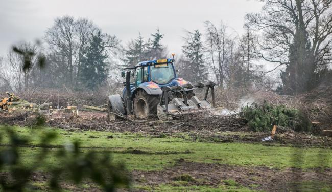 Trees being felled at the site where Blackwell Golf Club once was. Picture: SARAH CALDECOTT