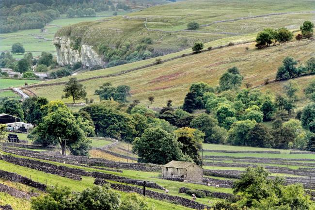 Garnetts Year - A traditional Yorkshire  Stone Barn and lines of Drystone walls,  provide the foreground interest to this unusual view of Kilnsey Crag, taken from Park Rash looking down Wharfedale..