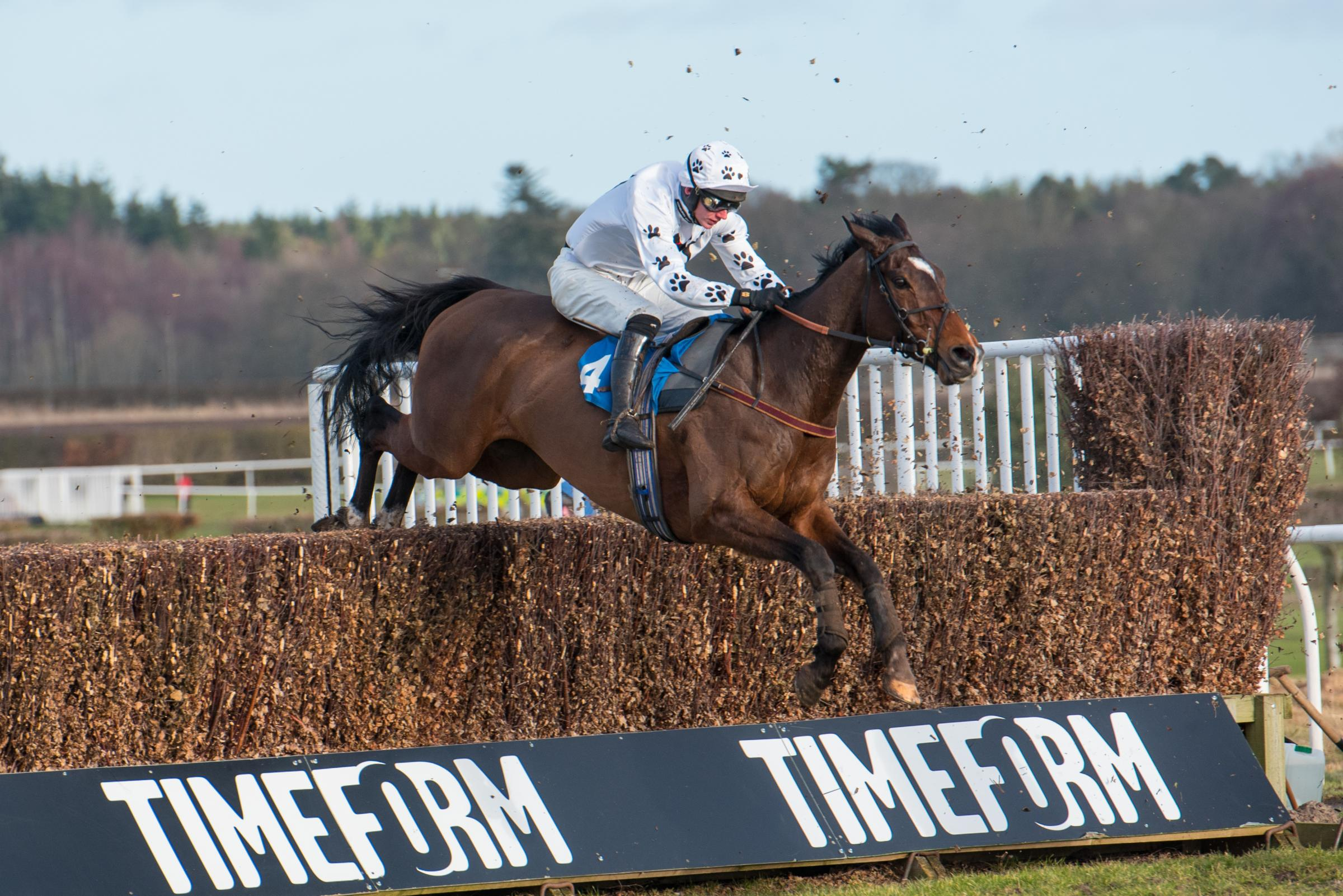 Big River on his way to a win at Kelso for Lucinda Russell.