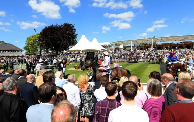 Racegoers watch Too Darn Hot in the parade ring prior to The Al Basti Equiworld Dubai Dante Stakes during day two of the Dante Festival at York