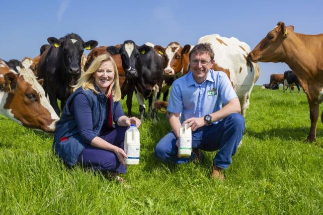 Directors at Acorn Dairy, Caroline and Graham Tweddle with their cattle